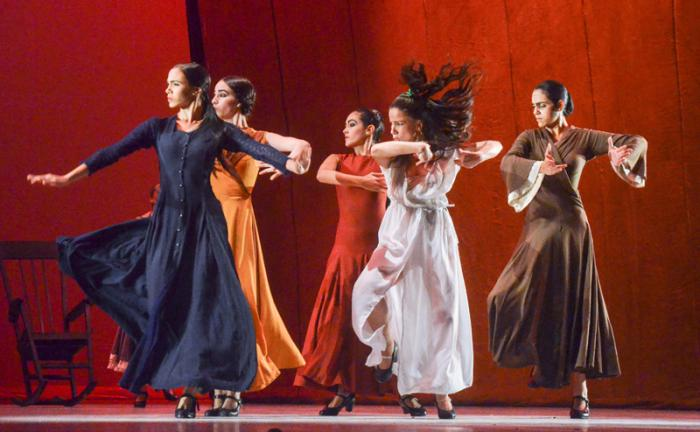 Flamenco Flamenco La Casa Alba en piel de flamenco